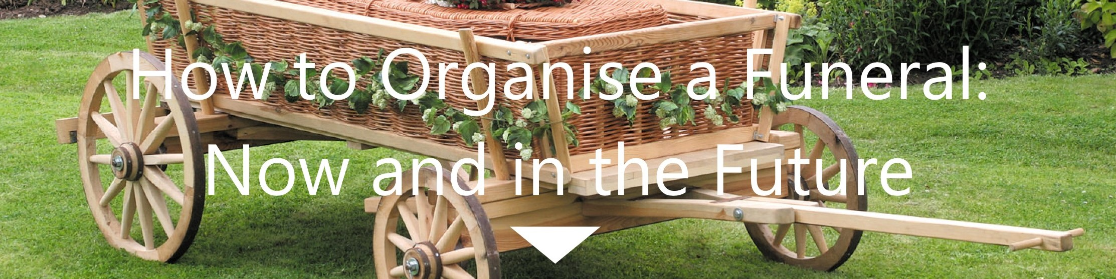 How to organise a funeral old park meadow our first and most important piece of advice when it comes to organising a funeral is that there is no rush allow yourself time to come to terms with what solutioingenieria Images